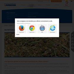 Nutrition animale - Pôle Agricole - Activités - Groupe Coopératif Maïsadour