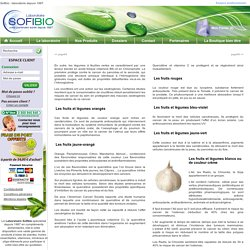 Nutrition et prevention des cancers : Page 5
