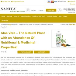 Aloe Vera– The Natural Plant with an Abundance of Nutritional & Medicinal Properties!