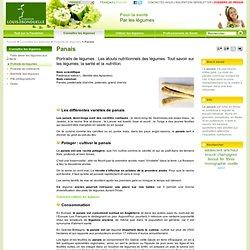 Panais - légumes et nutrition