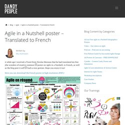 Agile in a Nutshell poster – Translated to French