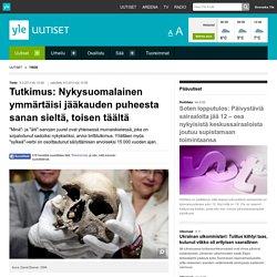 Tutkimus: Nykysuomalainen ymmärtäisi jääkauden puheesta sanan sieltä, toisen täältä