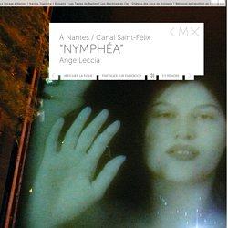 Nymphéa d'Ange Leccia au Canal Saint-Félix à Nantes - Oeuvre d'art contemporain - ESTUAIRE