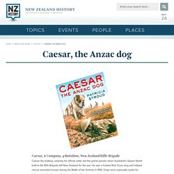 Caesar, the Anzac dog
