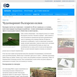Чудотворният български охлюв | Култура и общество | Deutsche Welle | 27.01.2011