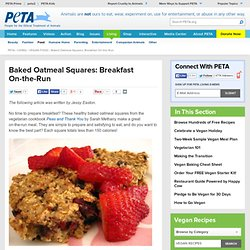 Baked Oatmeal Squares: Breakfast On-the-Run