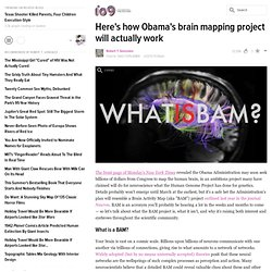 Here's how Obama's brain mapping project will actually work