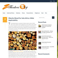 Obeche Wood For Sale Africa: Wide Applicability - Zthinkers Blog