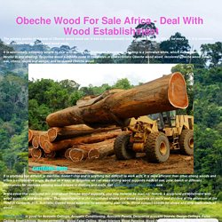 Obeche Wood For Sale Africa - Deal With Wood Establishment