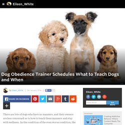 Eileen_White - Dog Obedience Trainer Schedules What to Teach Dogs and When