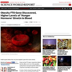 Obesity FTO Gene Discovered, Higher Levels of 'Hunger Hormone' Ghrelin in Blood