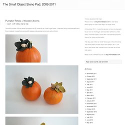 The Small Object Steno Pad » Pumpkin Petals + Wooden Acorns