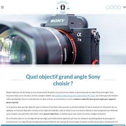 Quel objectif grand angle Sony choisir pour son hybride ?