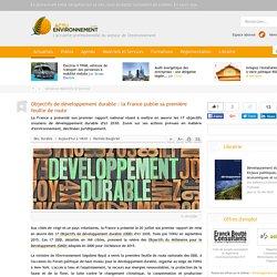 Objectifs de développement durable: la France publie sa première feuille de route