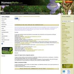 L'observation des ongles en homéopathie