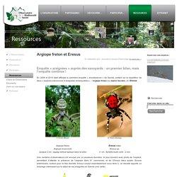 L'Observatoire de la biodiversité de Savoie