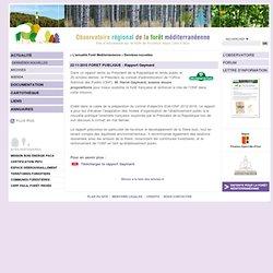OFME 22/11/10 FORET PUBLIQUE : Rapport Gaymard