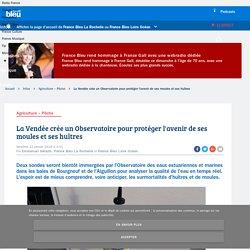 FRANCE BLEU 12/01/18 La Vendée crée un Observatoire pour protéger l'avenir de ses moules et ses huîtres