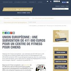 Une subvention de 411 000 euros pour un centre de fitness pour chiens