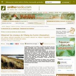 Observer les oiseaux de l'étang du Curnic (Guissény)