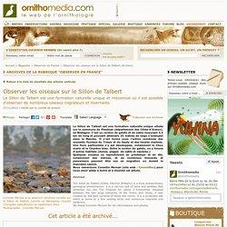 Observer les oiseaux sur le Sillon de Talbert