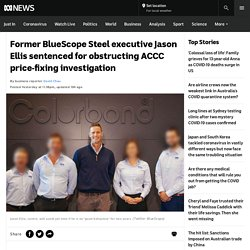 Former BlueScope Steel executive Jason Ellis sentenced for obstructing ACCC price-fixing investigation - ABC News