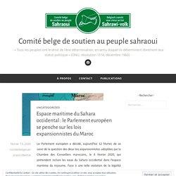 Espace maritime du Sahara occidental : le Parlement européen se penche sur les lois expansionnistes du Maroc – Comité belge de soutien au peuple sahraoui