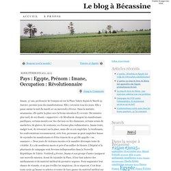 » Pays : Egypte, Prénom : Imane, Occupation : Révolutionnaire Le blog à Bécassine