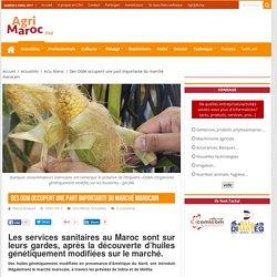 AGRIMAROC 03/01/17 Des OGM occupent une part importante du marché marocain Les services sanitaires au Maroc sont sur leurs gardes, après la découverte d'huiles génétiquement modifiées sur le marché.
