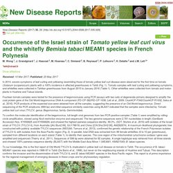 BSPP 23/05/17 NEW DISEASE REPORTS - Occurrence of the Israel strain of Tomato yellow leaf curl virus and the whitefly Bemisia tabaci MEAM1 species in French Polynesia