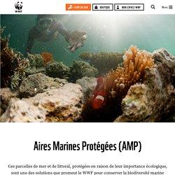 Océan : Aires Marines Protégées (AMP)