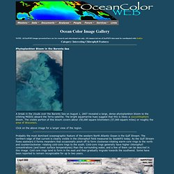 Ocean Color Image Archive Page