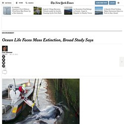 study-raises-alarm-for-health-of-ocean-life