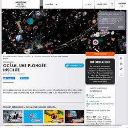 MNHN : Expo : Océan, une plongée insolite