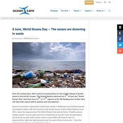 8 June, World Oceans Day - The oceans are drowning in waste