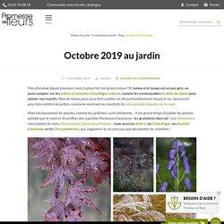 Octobre 2019 au jardin