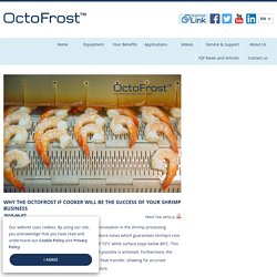 Why The OctoFrost IF Cooker Will Be The Success of Your Shrimp Business