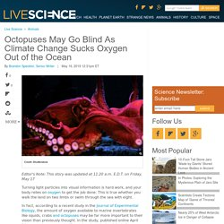 Octopuses May Go Blind As Climate Change Sucks Oxygen Out of the Ocean