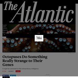 Octopuses Do Something Really Strange to Their Genes - The Atlantic