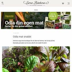 Odla mat snabbt - Sara Bäckmo