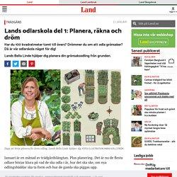 odlarskola med Bella Linde – grönsaksodling från grunden