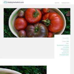 Odlingstips för nya tomatodlare