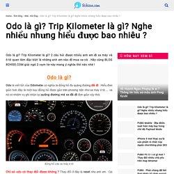 Odo là gì? Trip Kilometer là gì? Nghe nhiều nhưng hiểu được bao nhiêu ?