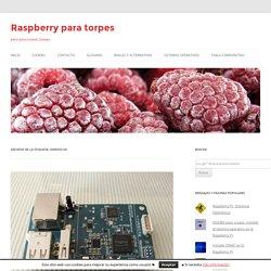 Raspberry para torpes