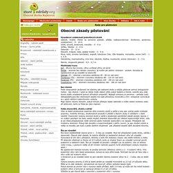 Staré odrudy - Rady pro pěstování - Ovocné stromy