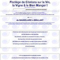 Oenologie Citations et Humour : le vin et les bons mots - Citations sur la vigne et le vin par de nombreux auteurs