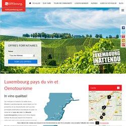 Oenotourisme au Luxembourg