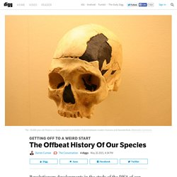The Offbeat History Of Our Species