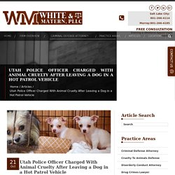 Utah Police Officer Charged With Animal Cruelty After Leaving a Dog in a Hot Patrol Vehicle