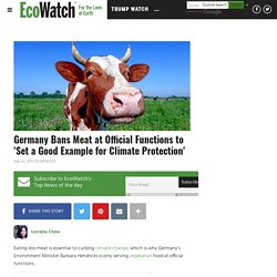 Germany Bans Meat at Official Functions to 'Set a Good Example for Climate Protection'